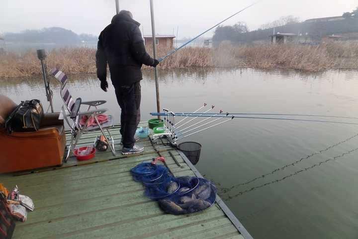 fish_pay_02222393.jpg