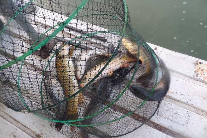 fish_pay_02245887.jpg
