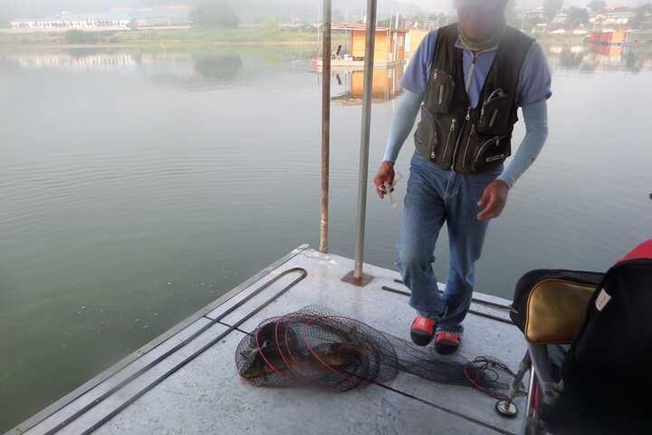fish_pay_02253739.jpg