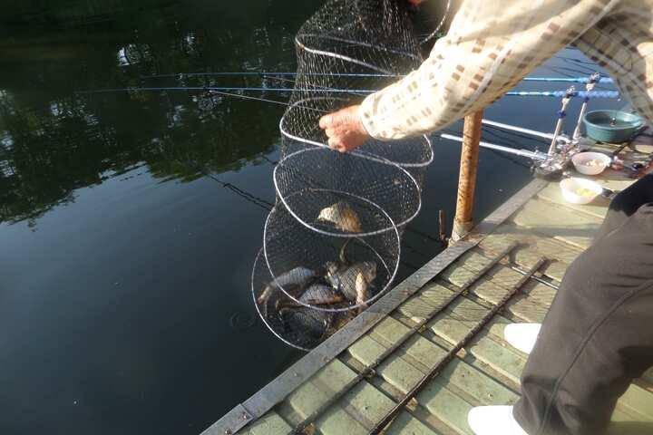 fish_pay_04063440.jpg