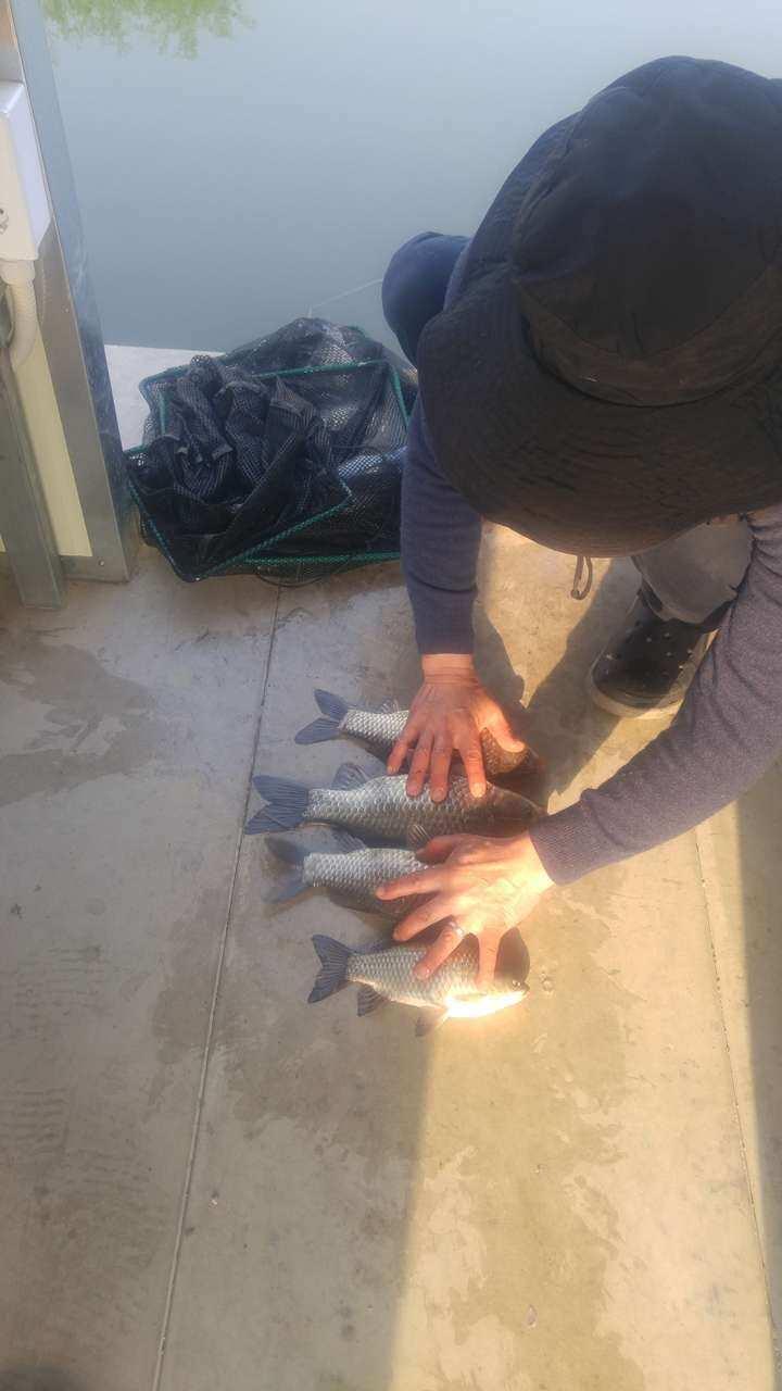 fish_pay_05430077.jpg