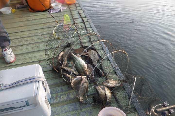 fish_pay_05434910.jpg