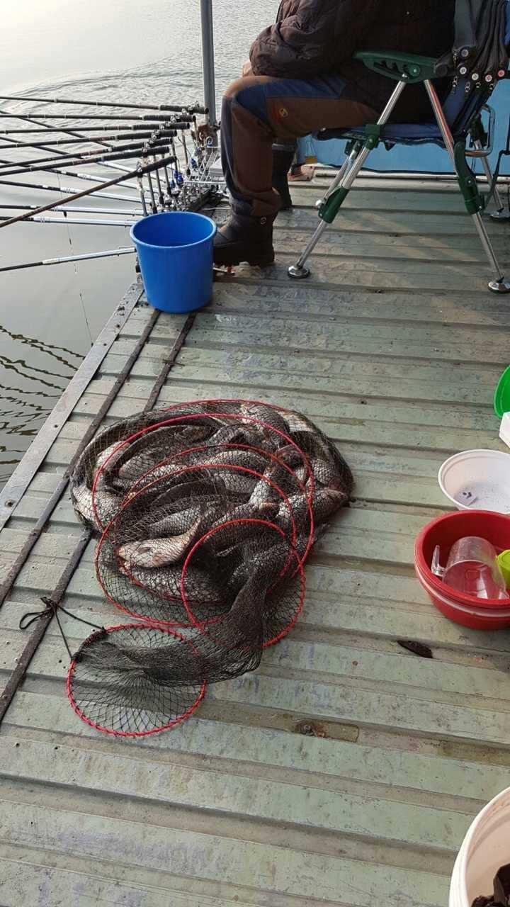 fish_pay_05551973.jpg