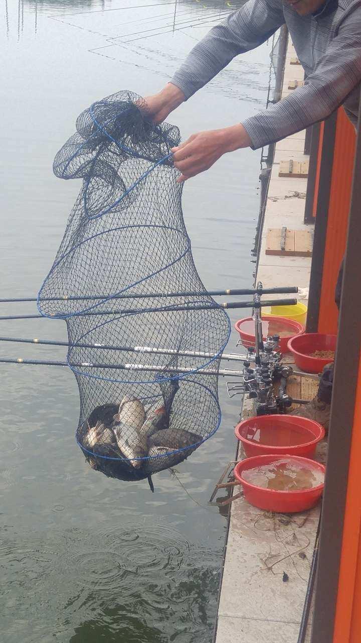 fish_pay_05593537.jpg