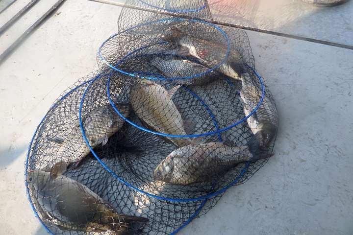 fish_pay_09505954.jpg