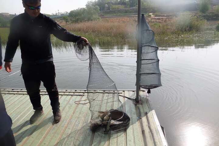 fish_pay_09521736.jpg
