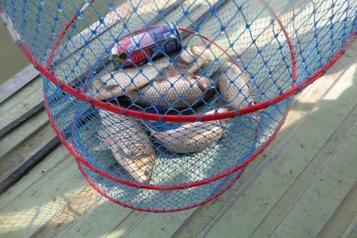 fish_pay_09523577.jpg