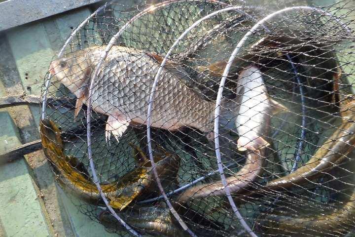 fish_pay_09530763.jpg