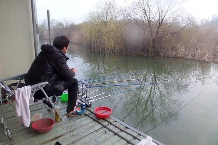 fish_pay_10135795.jpg