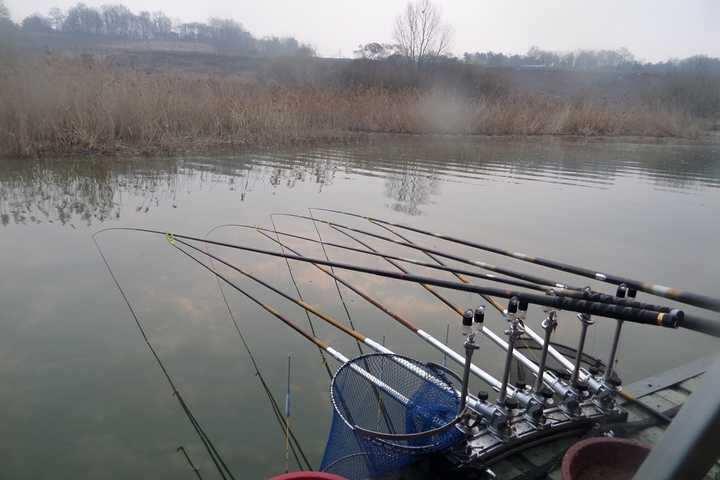 fish_pay_10140148.jpg