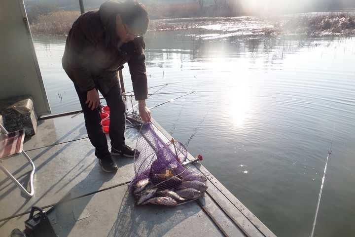fish_pay_10143043.jpg