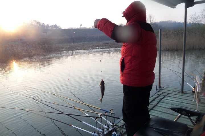 fish_pay_10151541.jpg