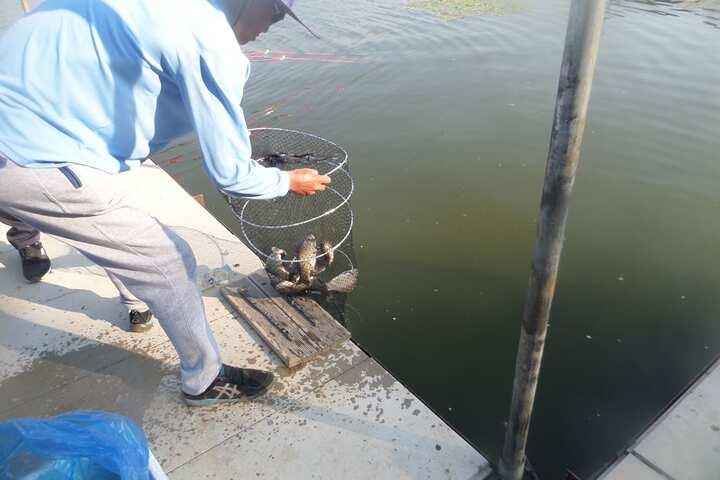 fish_pay_11263151.jpg