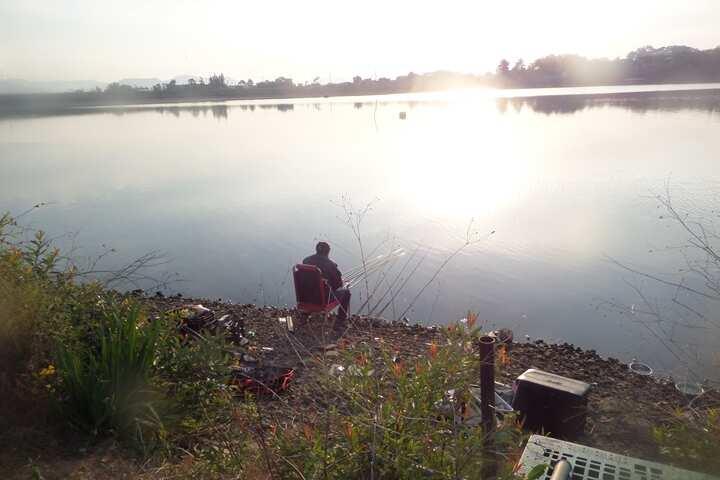 fish_pay_11274880.jpg
