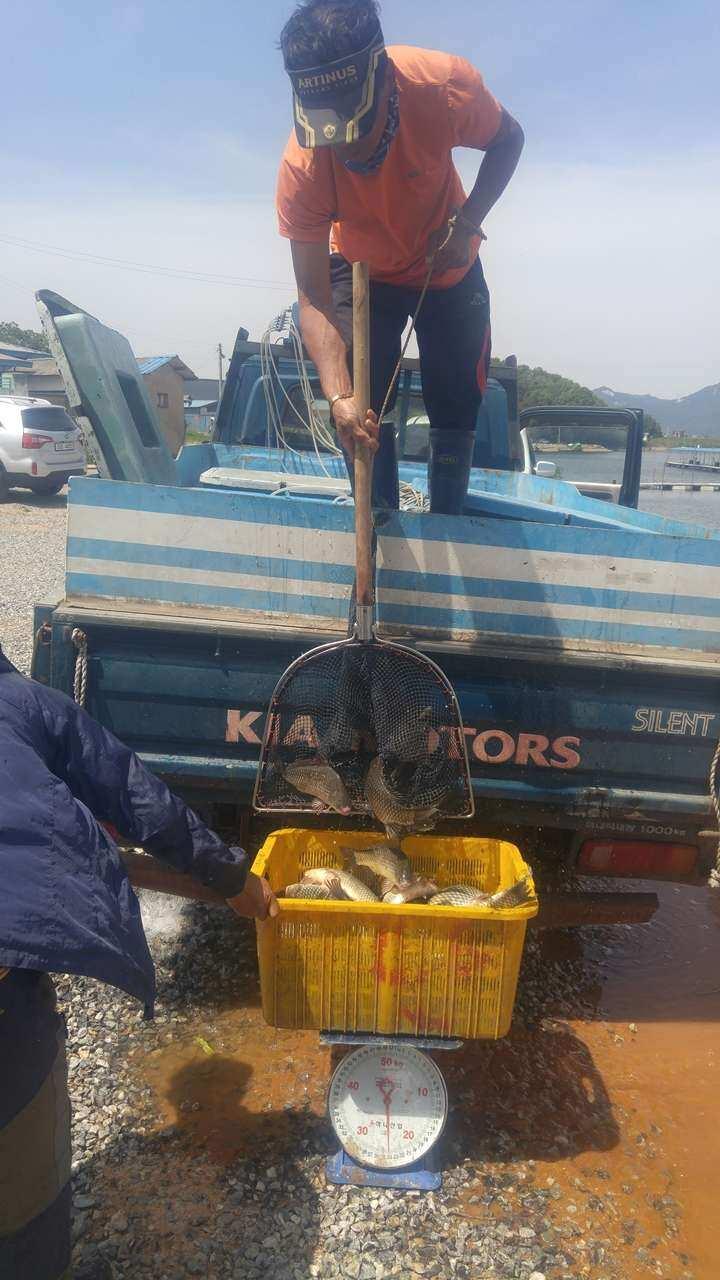 fish_pay_11281787.jpg