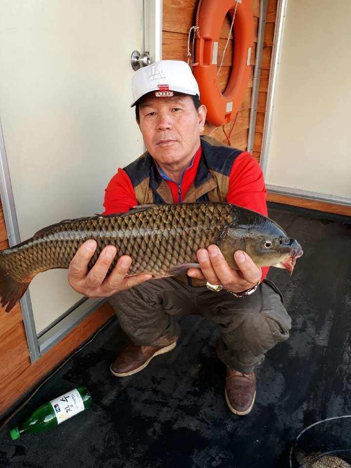 fish_pay_11330275.jpg