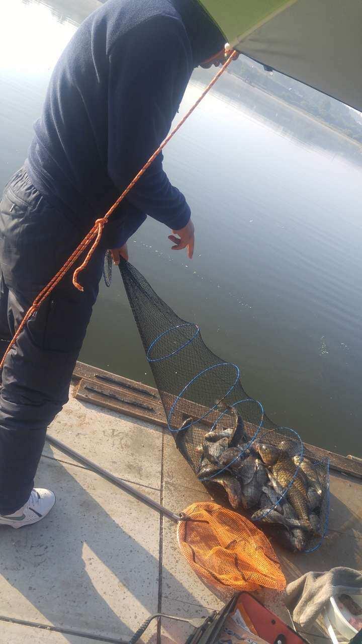 fish_pay_11445541.jpg