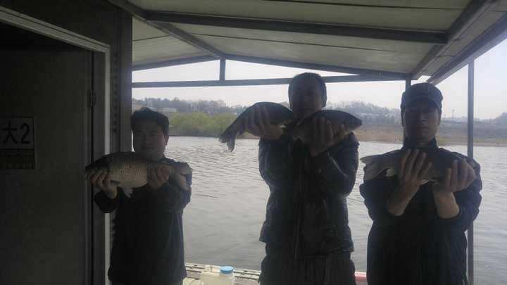 fish_pay_11501187.jpg
