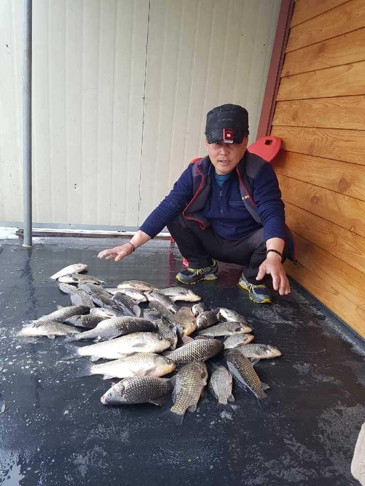 fish_pay_11505969.jpg