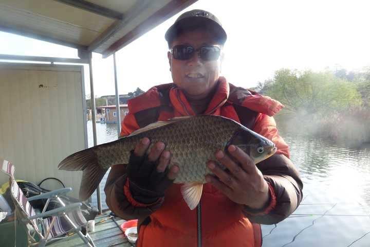 fish_pay_1151449.jpg