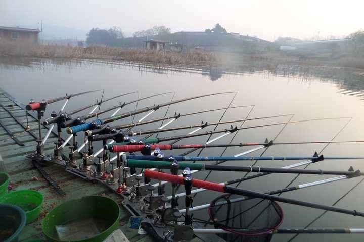 fish_pay_11530985.jpg