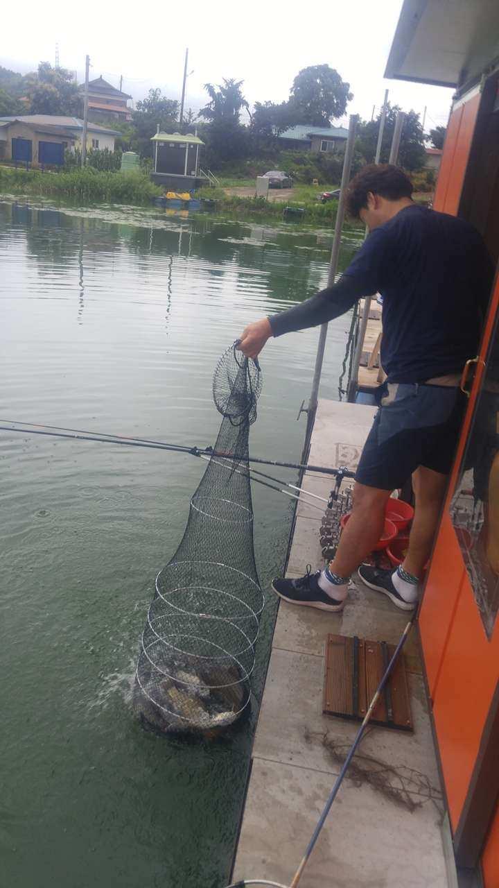 fish_pay_1201432.jpg