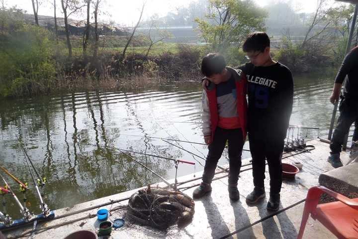 fish_pay_1233562.jpg