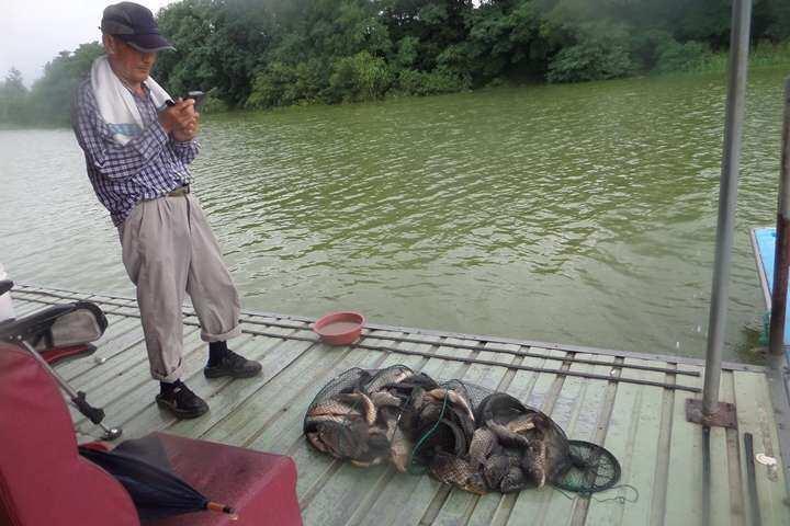 fish_pay_12580046.jpg