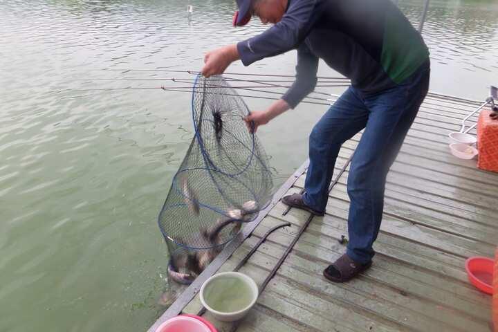 fish_pay_1259034.jpg